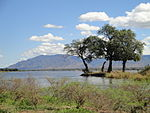Island in the Zambezi River at Mana Pools National Park-1.jpg