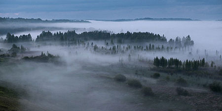 Izborsk Valley. landscapes10.Fog.jpg