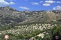 J23 253 Castillo de las cinco Esquinas.jpg