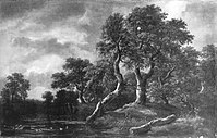 Jacob van Ruisdael - Waldlandschaft mit sumpfigem Gewässer - 892 - Bavarian State Painting Collections.jpg