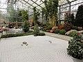 Japanese garden Botanika.jpg