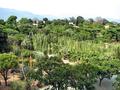 Jardín Etnobotánico en Oaxaca.png