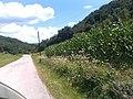 Jelovac, Serbia - panoramio (2).jpg