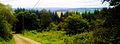 Jemelle landscape.jpg
