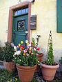 Jesuitenschloss in Merzhausen, Haustür mit Pflanzkübeln.jpg