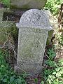 Jewish cemetery in Ivanovice na Hané 11.jpg