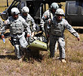 Joint Task Force-Bravo performs personnel, aircraft recovery exercise 140204-F-BZ556-009.jpg