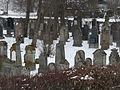 Juedischer Friedhof Freistett 24 fcm.jpg