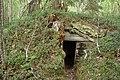 Juktåkolonin-Nydala-jordkällare-2012-06-24.jpg