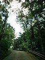 July 2016 Crooked Creek adventure - panoramio - Ron Shawley (9).jpg