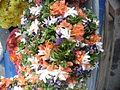 Kadhambam flowers.JPG