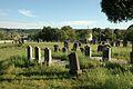 Karaite cemetery Halych 2011 01.jpg