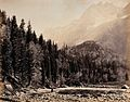 Kashmir; a mountain valley and forest. Photograph by Samuel Wellcome V0037800.jpg