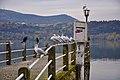 Kastoria-nikon-4804-ok.jpg