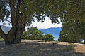 Kefalonia sea view (8181413358).jpg