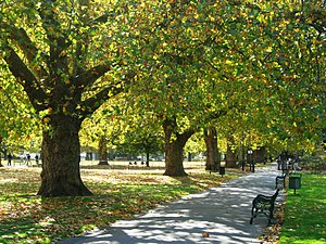 Kennington Common - Image: Kennington Park geograph.org.uk 1009307