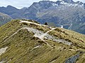 Kepler Track, New Zealand (62).JPG