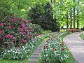 Keukenhof Garden (13).JPG