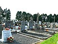 Kildare cemetery - geograph.org.uk - 902913.jpg
