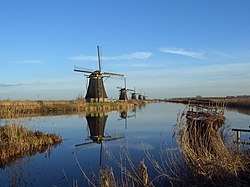 Panoramic view of windmills at Kinderdijk.