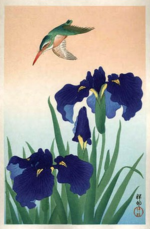 Bird-and-flower painting - Kingfisher and iris kachō-e woodblock print by Ohara Koson (late 19th century)