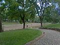 Kirkon puistoa.jpg