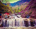 Kiwai, Kaghan Valley, KPK.JPG