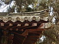 Kong Lin - an ornate roof corner - P1060073.JPG