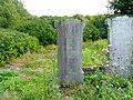 Koronowo - cmentarz ludności żydowskiej - panoramio (28).jpg