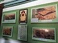 Koryo Museum in Kaesong 1.jpg