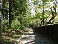 Kumano Kodo Dainichigoe World heritage12.JPG