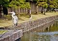 Kyoto To-ji Reiher 2.jpg