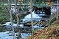 Līgatne - panoramio (33).jpg