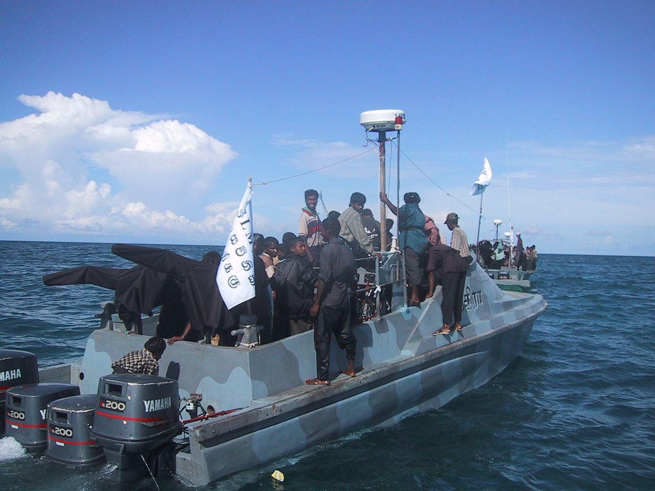 Sea tigers LTTW
