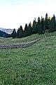 La Dôle - panoramio (96).jpg