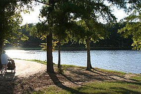 Lake Lincoln State Park--Mississippi.jpg