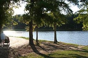 Lake Lincoln State Park--Mississippi.jpg