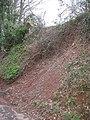 Land slip, Dumblehole Lane - geograph.org.uk - 988659.jpg