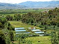 Landscape Madagascar 03.jpg