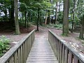 Landschaftsschutzgebiet Waldgebiete bei Dielingdorf und Handarpe LSG OS 00025 Datei 8.jpg