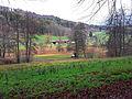 Langenmoos Weiningen2.jpg