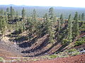 Lava Butte 2011.jpg