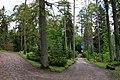 Leśne Arboretum Warmii i Mazur w Kudypach koło Olsztyna im. Polskiego Towarzystwa Leśnego. - panoramio.jpg