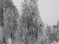 File:Led log vrh 109.webm