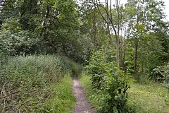 Lexden Gathering Grounds 7.jpg