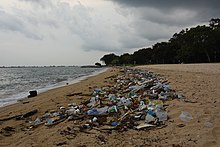 Washed Up Plastic Waste On A Beach In Singapore
