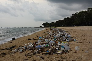 Great Pacific garbage patch - Washed up plastic waste on a beach in Singapore.