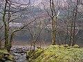 Loch Eck, Benmore-Glenbranter Forestry Road - geograph.org.uk - 159886.jpg