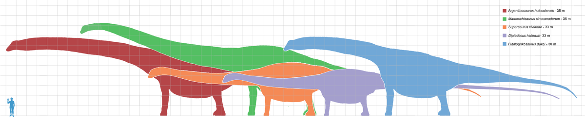 Longest dinosaurs1.png