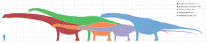 Argentinosaurus - Argentinosaurus (in red) compared to 4 other sauropods.